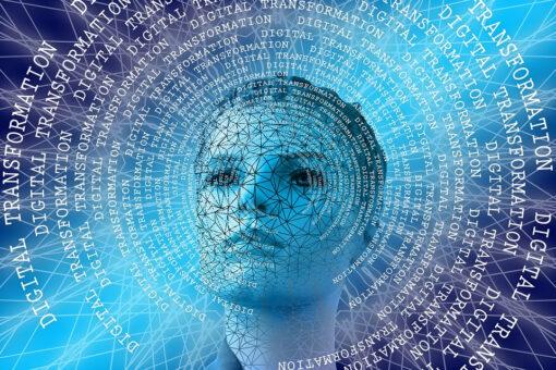 Digitale Kompetenz-Tests in der Ausbildung