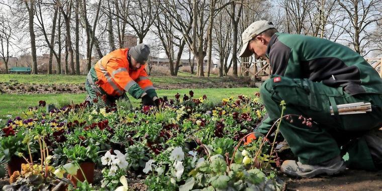 Frühling lässt Arbeitslosenzahl sinken